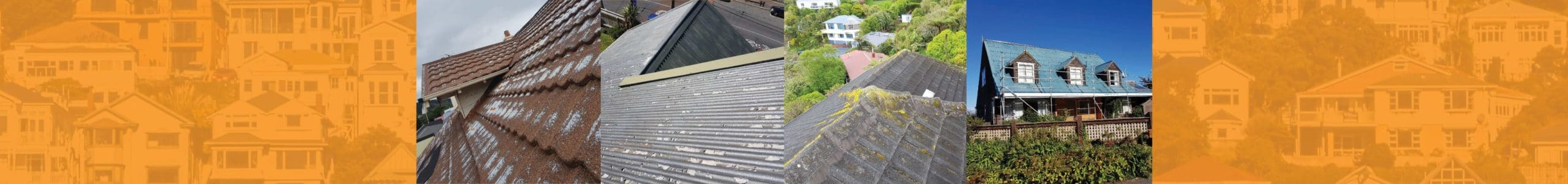 Roof Repairs Painting Insulation Wellington Paul
