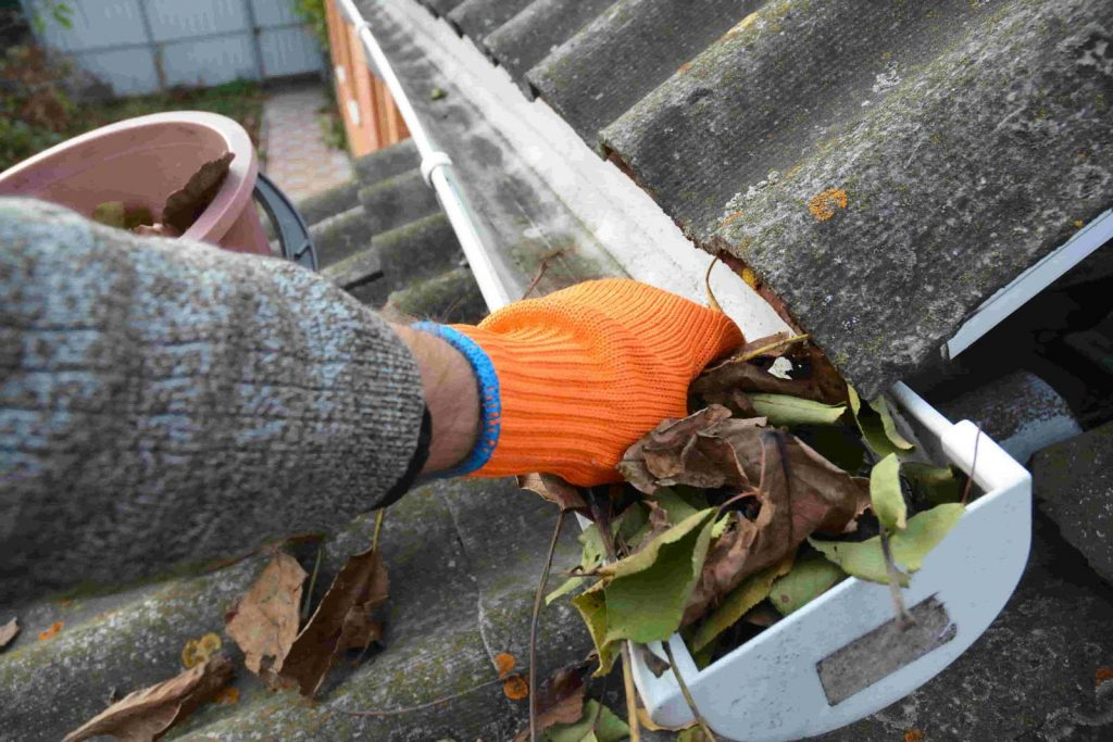 How Roof Cleaning Saves You Time and Money